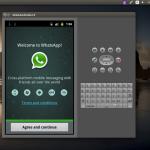 Usare Whatsapp da PC Linux tramite emulatore Android