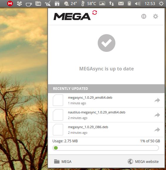 mega-sync-show-status